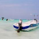 tropicalboats1