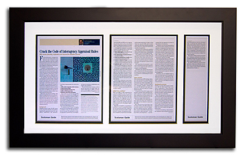 Framed Article for Commercial Market
